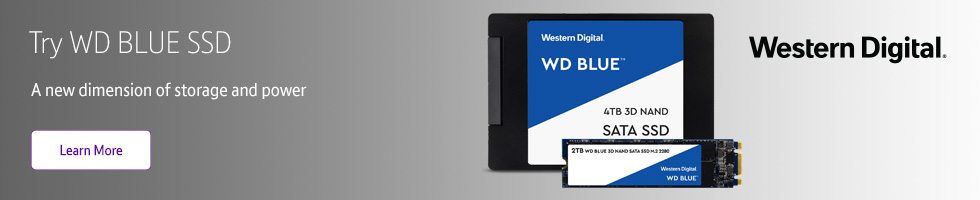 Try WD Blue SSD