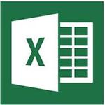 Microsoft Excel 2013 32-bit/64-bit English Medialess Business