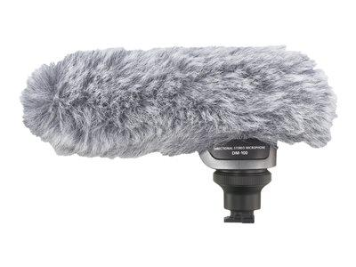 Canon DM 100 - microphone