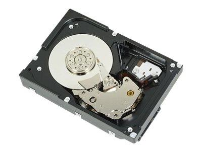 Dell 1TB 7.2K RPM SATA 6Gbps 512n 3.5 INCH Cabled